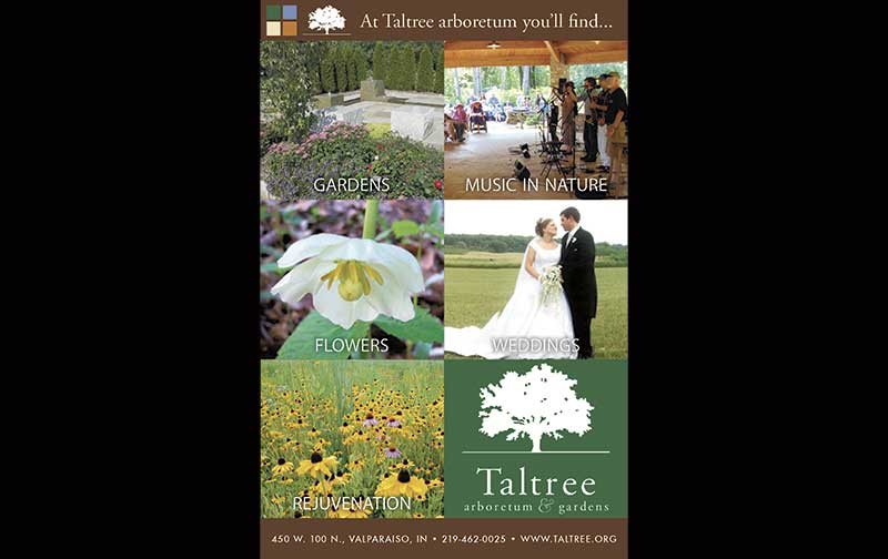 Print ad for Taltree